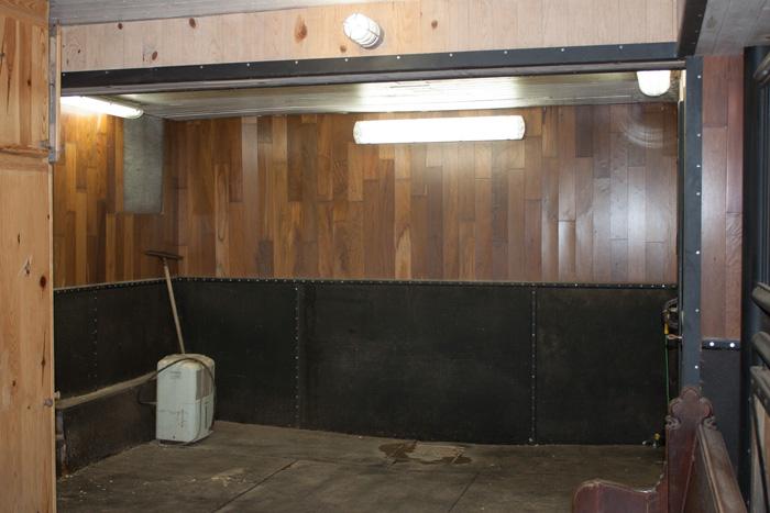 Indoor Horse Shower